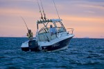 Wellcraft 210 Coastal Lifestyle